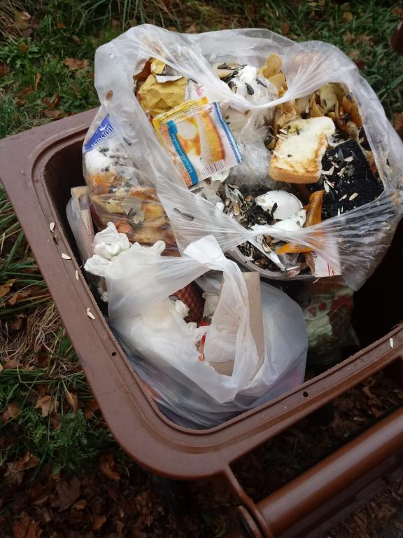 Biotonne mit Plastik